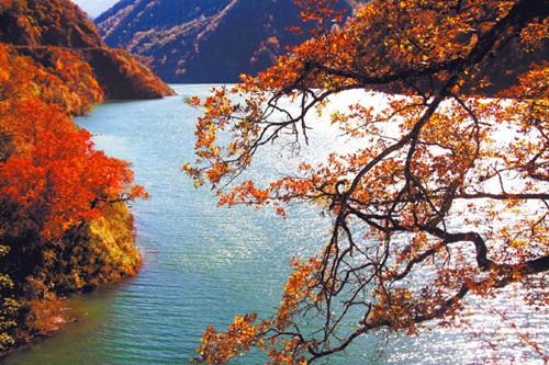 四川白马王朗风景区位于绵阳市平武县白马藏乡