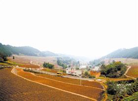 乐至金顺镇投入1500余万实施土地整理项目