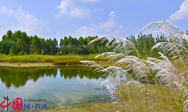 成都新津白鹤滩国家湿地公园景观效果初现