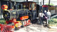 6日起 南充市民可坐着小火车逛都京丝绸文化产业园
