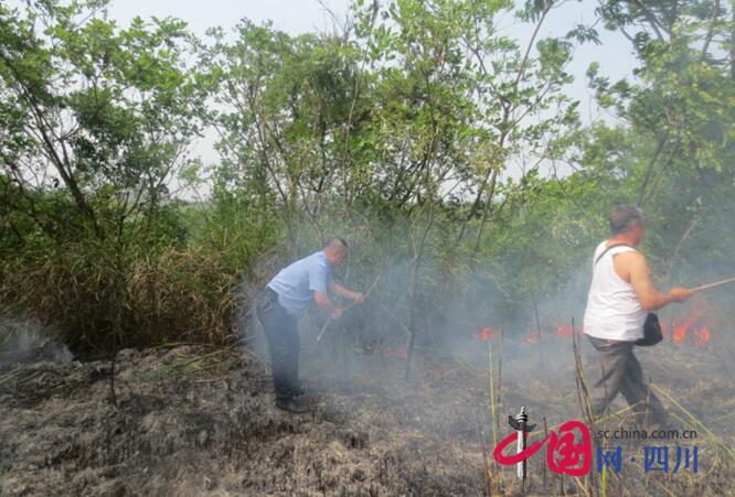 蓬溪县常乐镇:警民并肩扑烈火 英勇扑救护青山