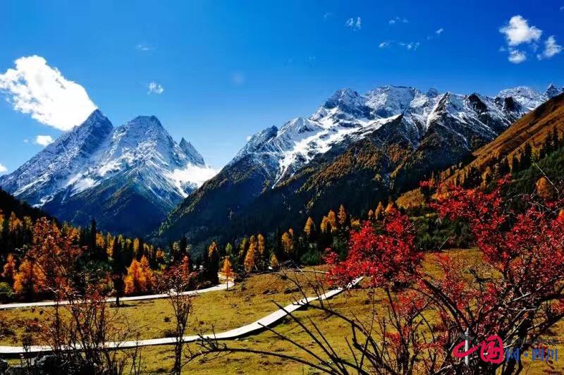 旅游 小编推荐 > 正文     四姑娘山风景区位于四川省阿坝藏族羌族