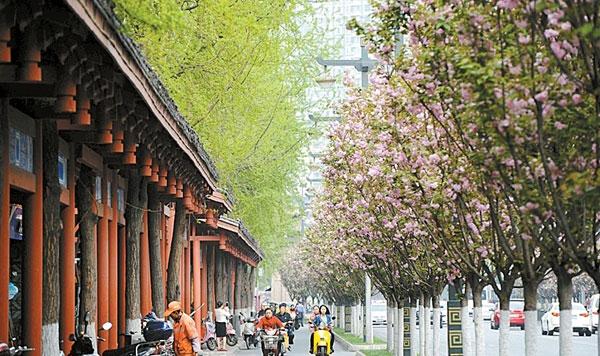 成都增花添彩总体规划发布 花重锦官城3年后初现