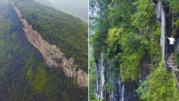 6旬老人攀崖种树30年 500亩荒山变绿林