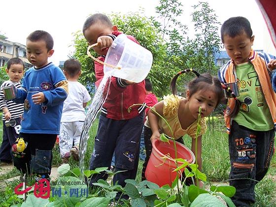 蒲江县南街幼儿园:以自然为源,塑童梦乐园