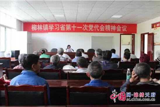 恩阳区柳林镇传达学习省第十一次党代会精神