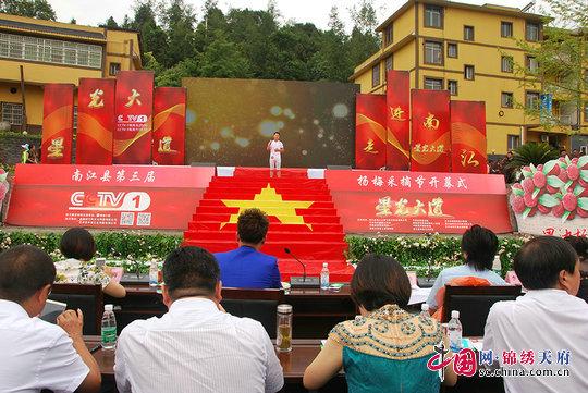 《星光大道》南江海选遇杨梅采摘节  成千上万游客乐享特别文化盛宴