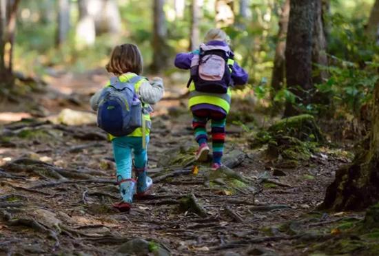抓住暑期最后的尾巴 西岭森林大课堂给你最大优惠