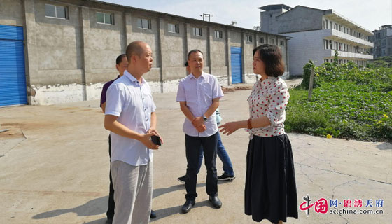 南充市领导带领商粮局等部门 深入蓬安县河舒河镇开展巡查督导工作